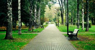 Chapaevskiy2-690x459